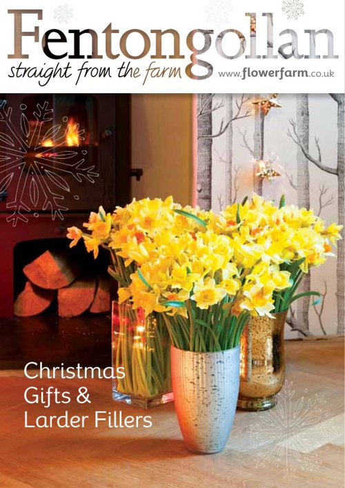 Copy of Fentongollan Christmas Catalogue 2013