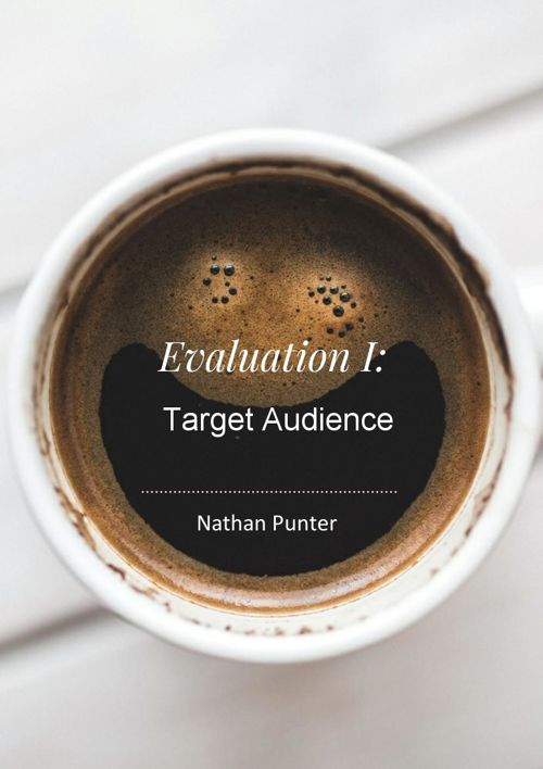 Evaluation E: Target Audience