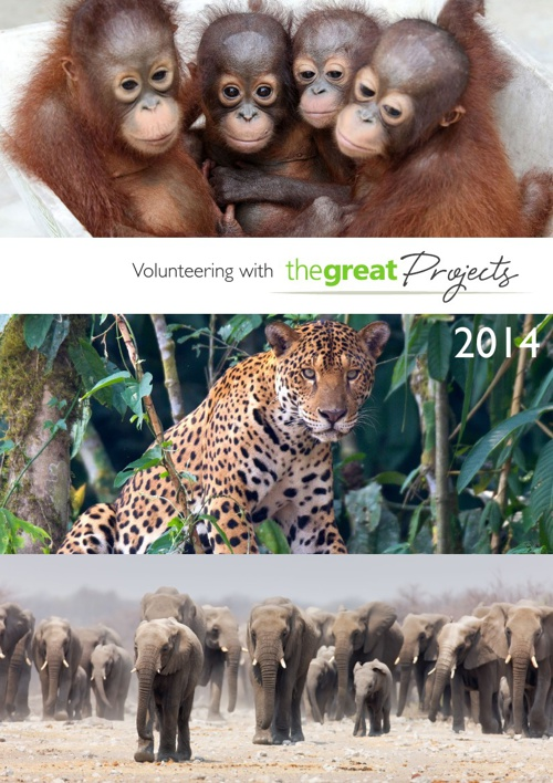 The Great Projects 2014 Brochure