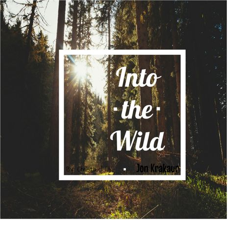 Copy of Into the wild