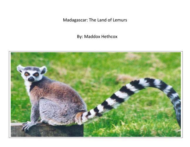 Max: Madagascar