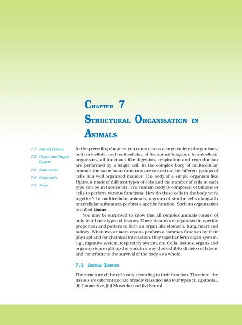 Ch 7. Structural organisation in animals