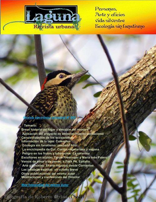 Laguna, revista urbana- junio 2015