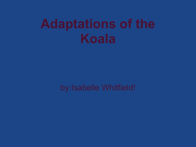 koala adaptations
