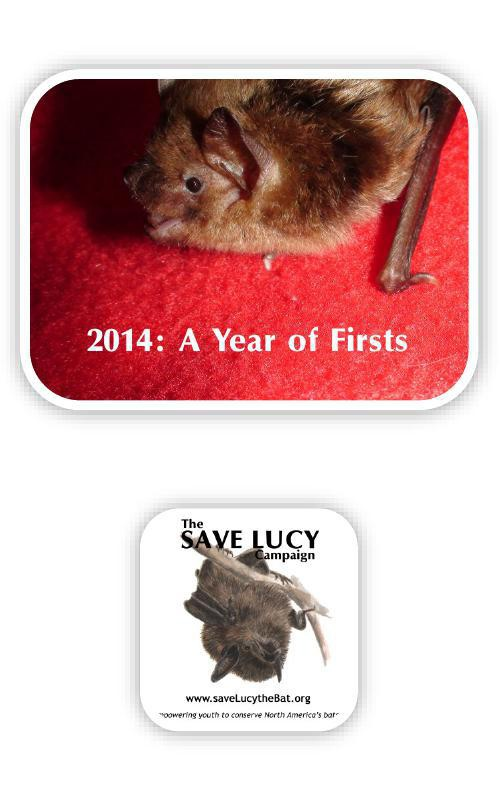 Lucy's Year 2014