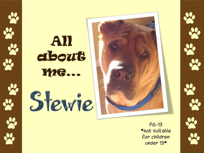 Stewie Book PG-13 rated