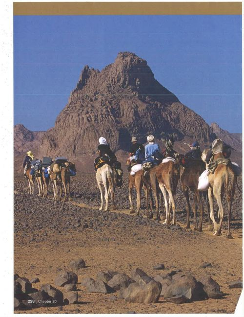 Life in the Sahara and Sahel Adapting to a Desert Region