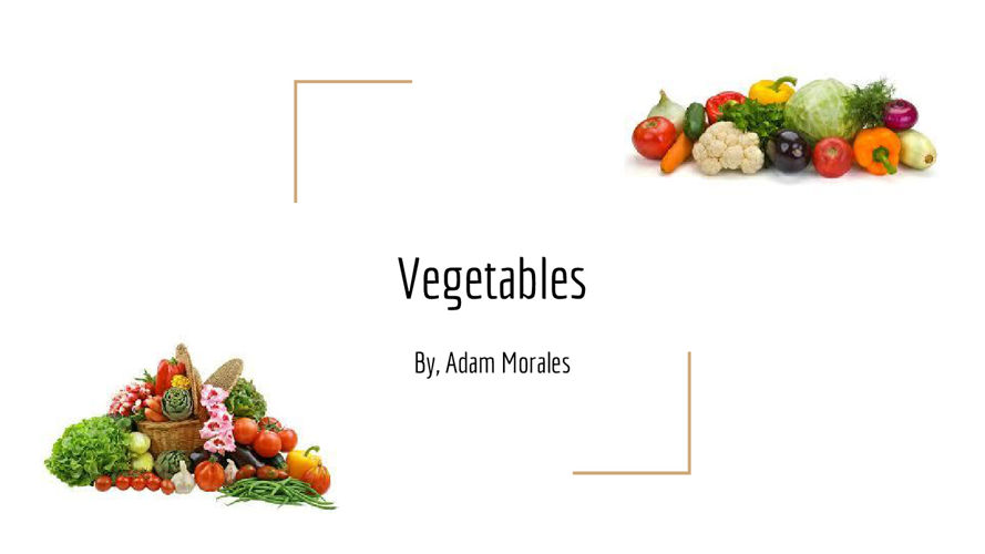 -Vegetable Book