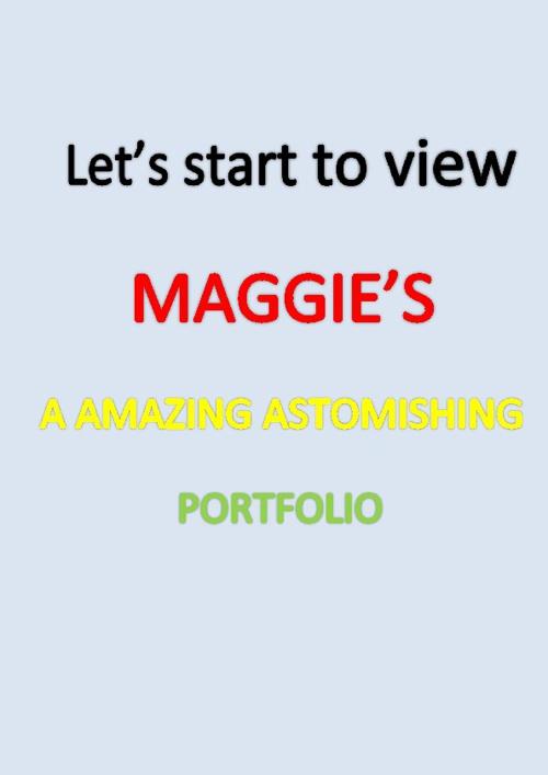 3S-MAGGIE LIN-PORTFOLIO