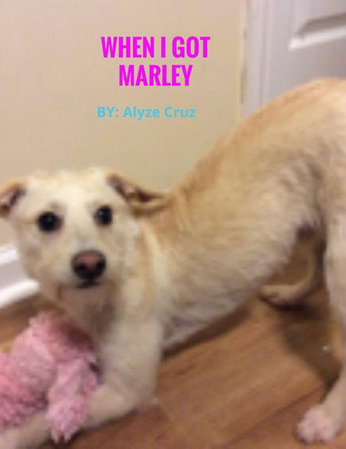 ♥WHEN I GOT MY DOG MARLEY!♥