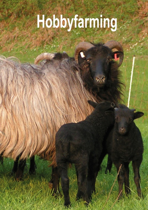 RUBCO - hobbyfarming voor schapen en geiten