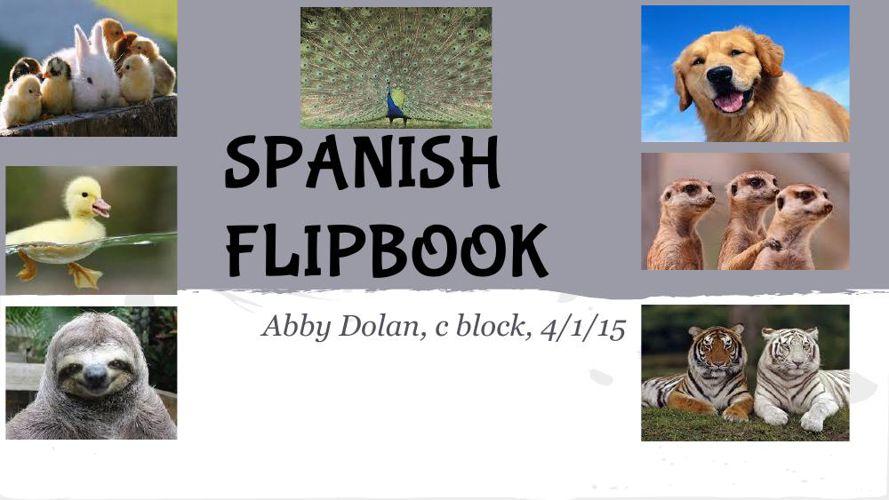 spanish flipsnack project