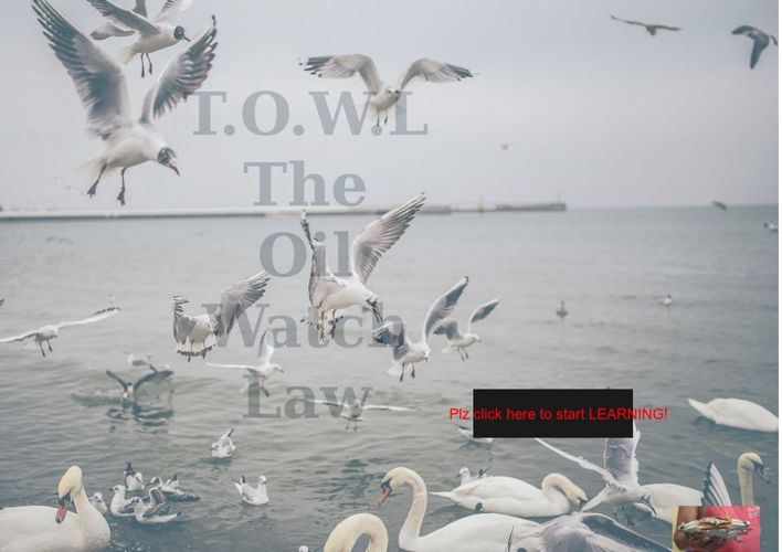 T.O.W.L / Oil Watch Law