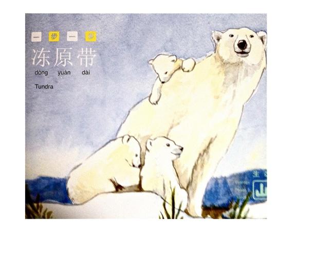 冻原带- dòng yuán dài
