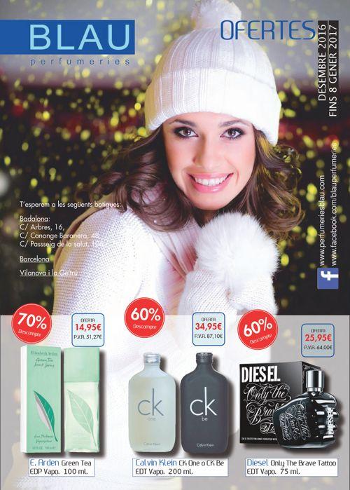 folleto diciembre