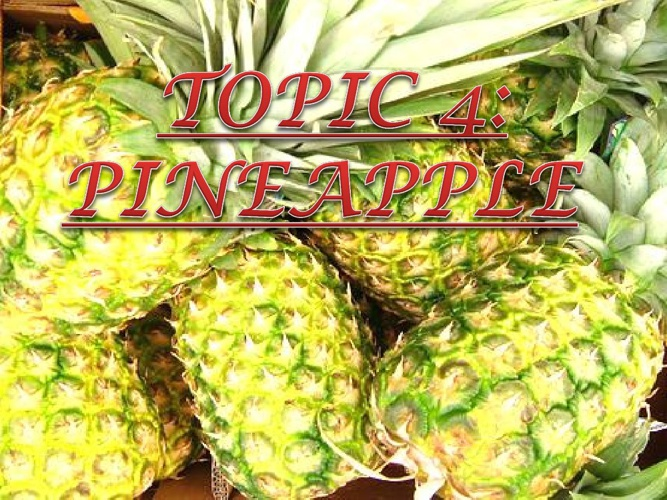 CHAPTER 4: TOPIC 3 (PINEAPPLE)