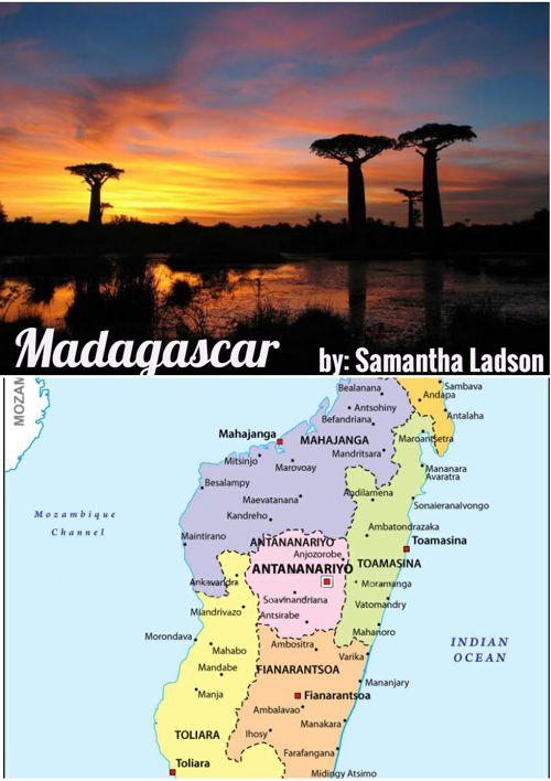 Madagascar Flipbook- Samantha Ladson