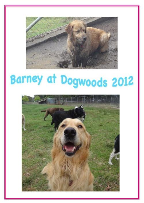 Barney's Holidays to Dogwoods 2012
