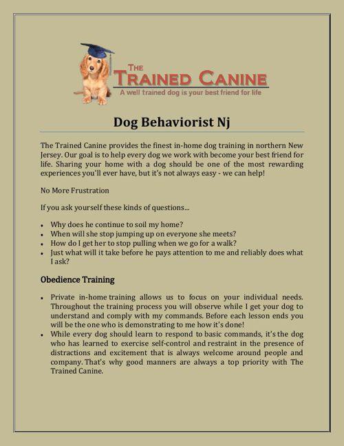 Dog Behaviorist Nj