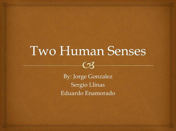 Two Human Senses Biology