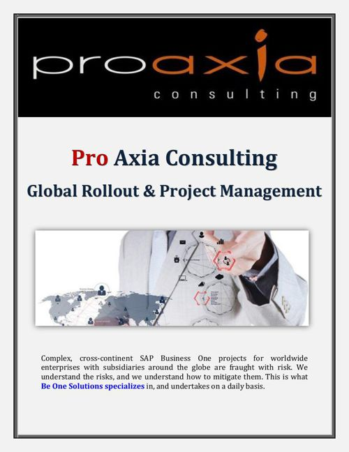 Pro Axia Consulting: Global Support Services