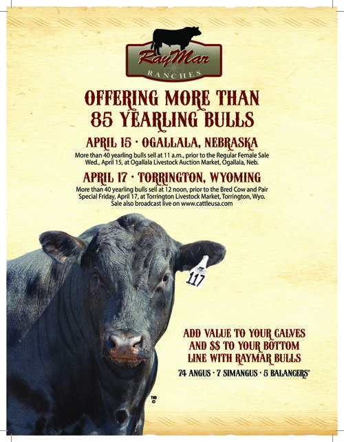 RayMar Ranches 2015 Spring Bull Sale Catalog
