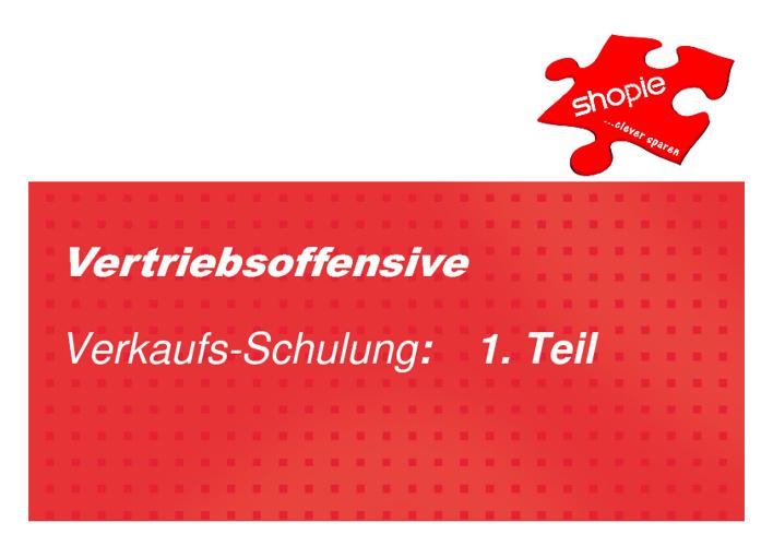 VERTRIEBSOFFENSIVE: Verkaufsschulung 1. Teil