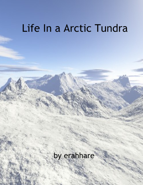 Life in Arctic Tundra by Erah