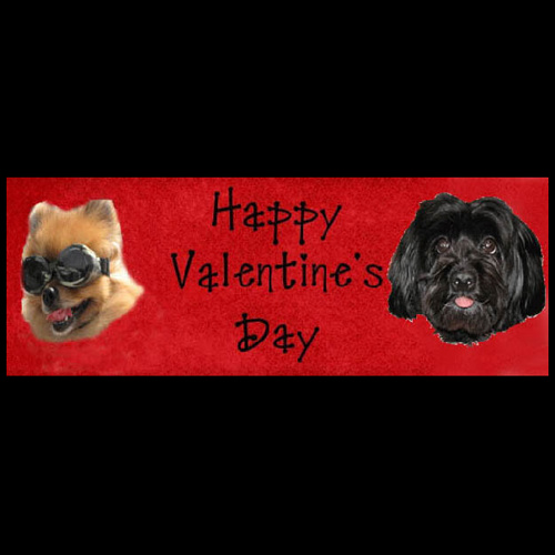 Cool Dude Valentines