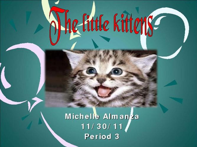 The Kittens