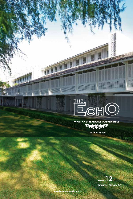 The Echo - edition. 12 - January + February 2013