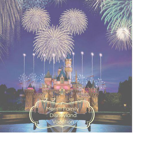 Merritt Family Disneyland Quote