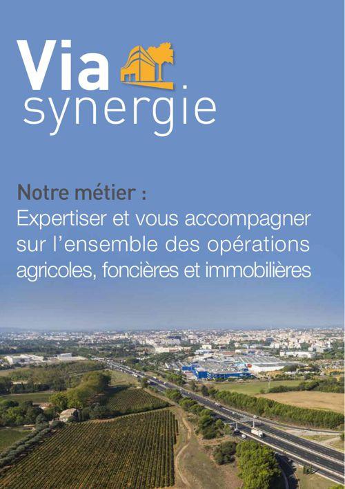 Depliant Viasynergie 2015