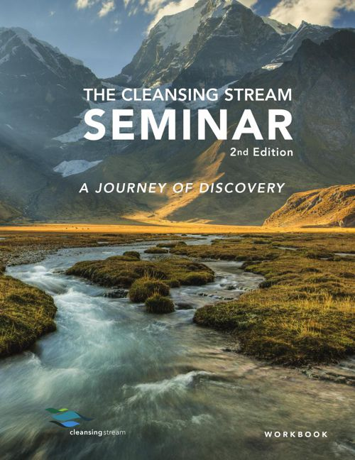 Cleansing Stream Seminar Workbook Preview