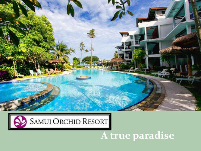 Beach Resorts Koh Samui