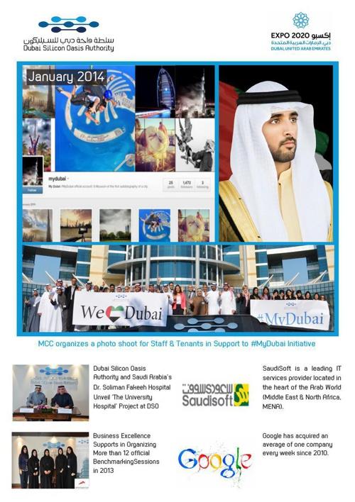 DSOA Newsletter January 2013