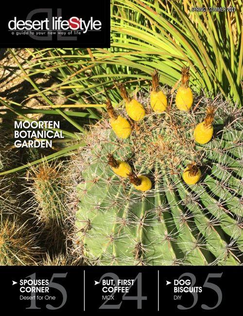 Desert Lifestyle Magazine Spring-Summer 2017