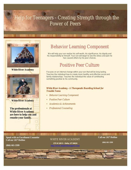 Juvenile Treatment Programs