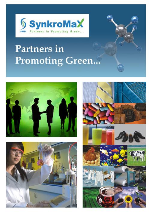 SMBPL Corporate Brochure