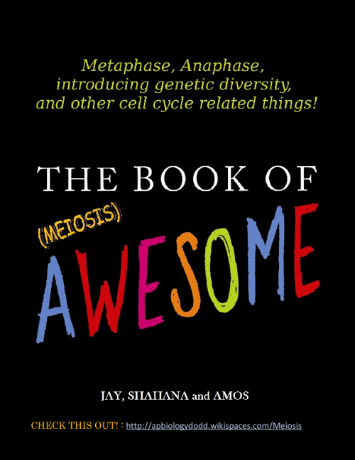 The Book of (Meiosis) Awesome