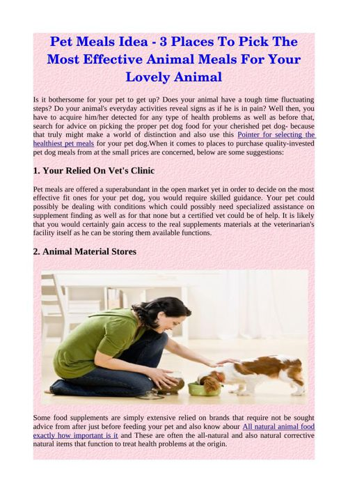 Pet Meals Idea - 3 Places To Pick The Most Effective Animal Meal