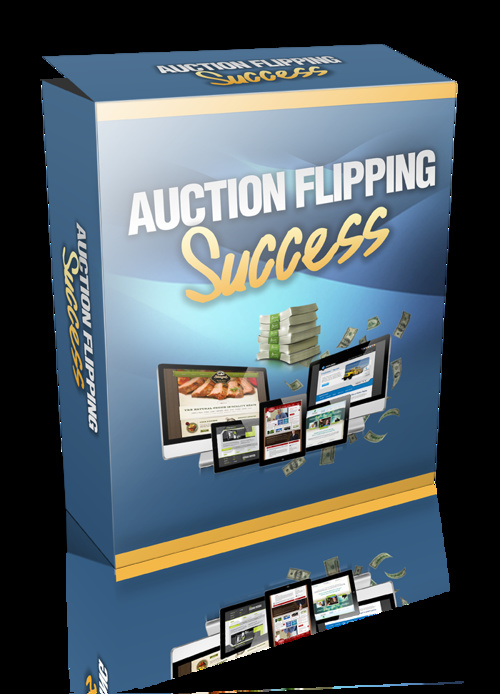 Auction Flipping Success