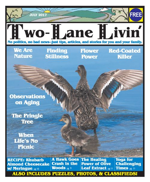 Two-Lane Livin July 2017