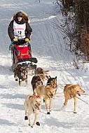 a plug to Matt Hyashida, Iditarod competitor!