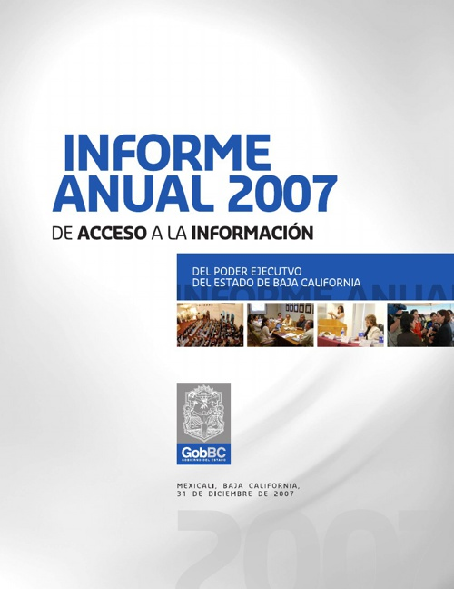 Informe 2007