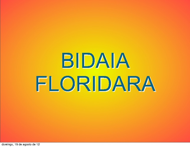 Bidaia Floridara. Aurkezpena