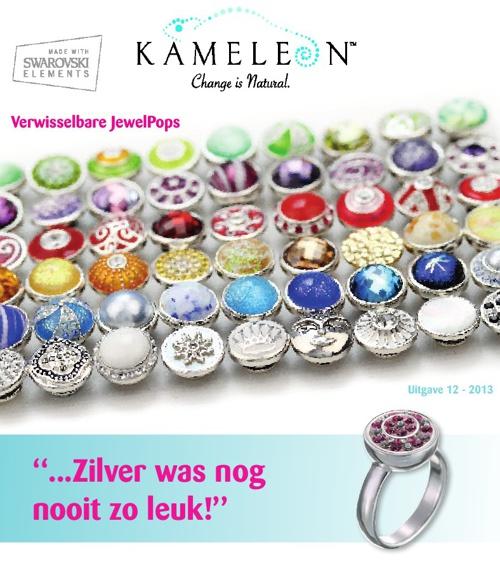 Kameleon brochure 2013