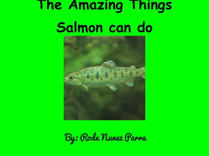The Amazing Things Salmon can do