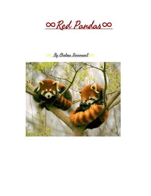 RedPandaBook