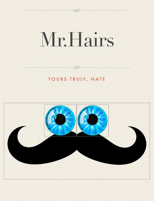 Mr.Hairs